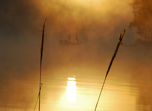 mist lake fog sunrise dawn nc fishing norwood tillery