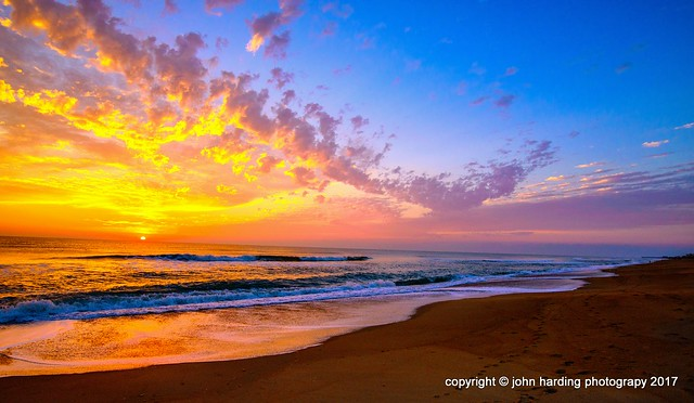 Ode To Yellow: Sunrise at Southern Shores