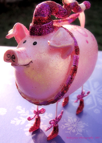 A Holiday Swine