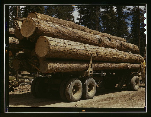 Truck load of ponderosa pine, Edward Hines Lumber Co. operations in Malheur National Forest, Grant County, Oregon  (LOC)