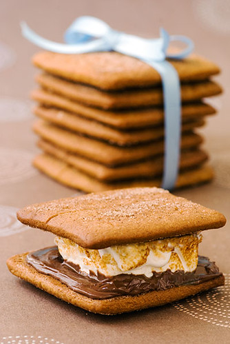 grown_up_graham_crackers_smores_3908.jpg