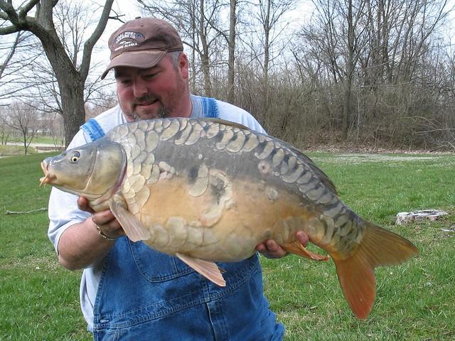 carp fishing baits