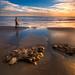 D300 Landscape, Hendry's Beach by Toby Keller / Burnblue