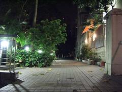 courtyard(0.0), backyard(0.0), garden(0.0), alley(0.0), town(1.0), landscape lighting(1.0), road(1.0), yard(1.0), house(1.0), street light(1.0), residential area(1.0), night(1.0), street(1.0), lighting(1.0), neighbourhood(1.0),