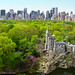 Belvedere Castle & Central Park North Skyline