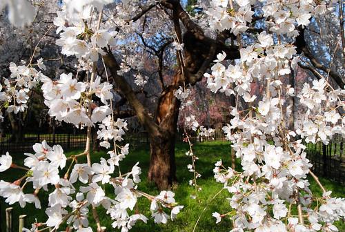 233 po sie saisons le printemps musset claudel for Alfred de vigny la maison du berger