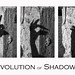 Evolution of  Shadows