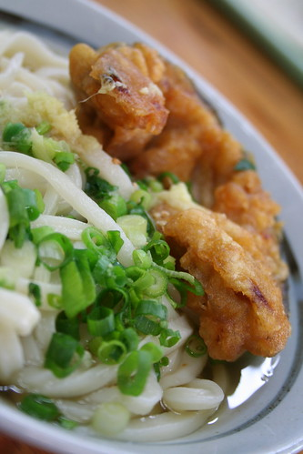 Udon expedition (3)