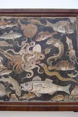 Marine Life Mosaic from House VIII Pompeii demonstrating the vermiculatum technique Roman 2nd century BCE