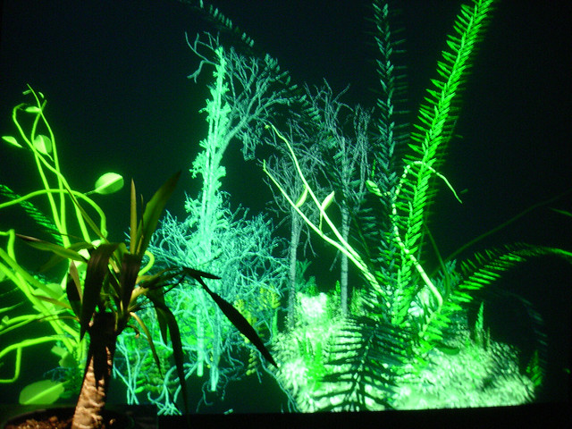 Christa Sommerer & Laurent Mignonneau : The Interactive Plant Growing (1992)