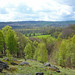 Small photo of Shipley Glen and Airedale