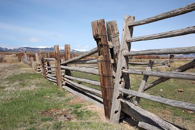 How to Build a Wood Fence Gate | DoItYourself.com