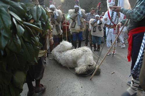 Silio La Vijanera 2008 070