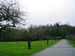 forest lawn cemetery - gresham, or