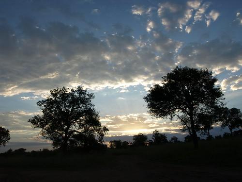 africa sunset sky sun sol public clouds landscape southafrica geotagged soleil tramonto nuvole sonnenuntergang © himmel olympus ciel cielo afrika puestadesol sole nuages puesta sonne zuiko paesaggio rsa allrightsreserved krugernationalpark coucherdesoleil krugerpark kruger 2007 afrique sudafrica áfrica paulkruger fpc zd tancredi ©allrightsreserved krugernp photology goldmedalwinner 1442mm december2007 26december2007 parcokruger e410 infinestyle olympuse410 overtheexcellence platinumheartaward carlotancredi georeferenziata geo:lat=2425918847110403 geo:lon=3164685635379965
