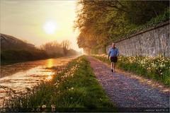 An Evening Stroll Along the Royal Canal