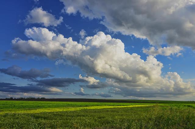 Большие облака над зеленой поляной