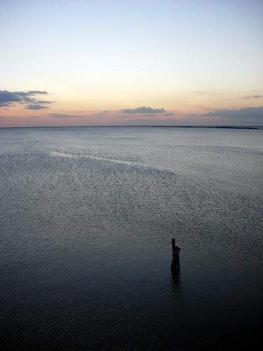 sunset water tampa bay view tampabay floriday