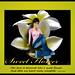Sweet Flower by Bella March