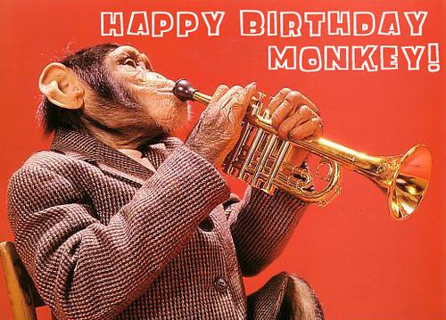 Funny monkey, monkey\'s birthday