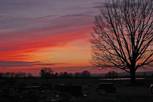 sunset tree silhouette treesilhouette arkansas ozarks culpepper ozarkmountains naturalstate arkansasbeauty