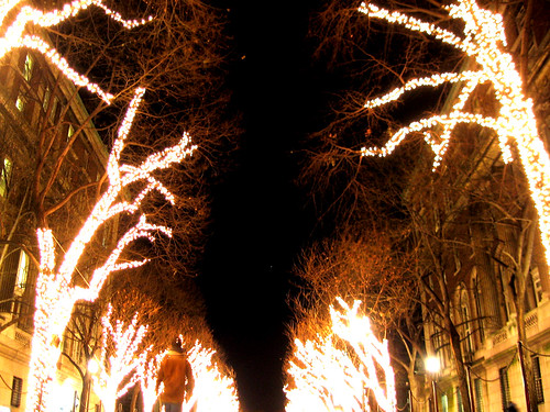 Trees on Fire.jpg