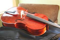 bowed string instrument, string instrument, bass violin, cello, string instrument,