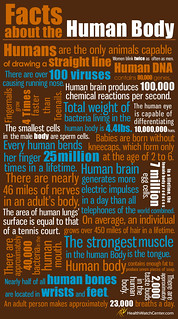 Facts About The Human Body (Infographic)