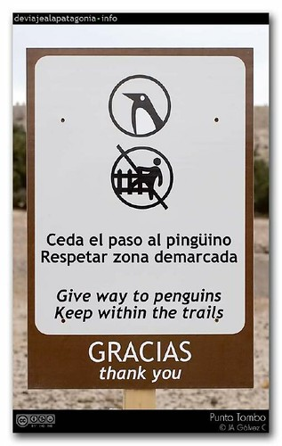 """ceda el paso"" / ""give way"""