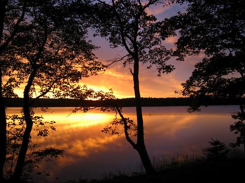 sunrise bravo yarmouthnovascotia superhearts platinumheartaward
