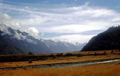 NEW ZEALAND FEB 1977242_edited-1