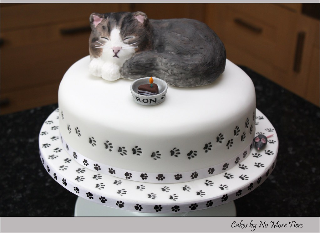 Sculpted cat cake with edible cat topper - a photo on Flickriver