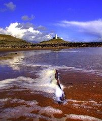 BOTANICAL GARDENS TO MUMBLES - SARNIE PICNIC ON THE BEACH :-)