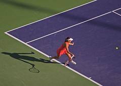 sport venue, individual sports, tennis court, tennis, sports, tennis player, ball game, racquet sport,