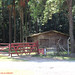 Casa de madeira no Km 34,8 da Rodovia Raposo Tavares