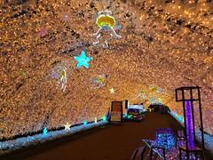 illuminations イルミネーション 2017