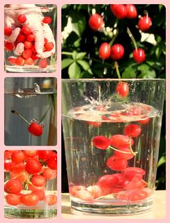 Cherries in the water