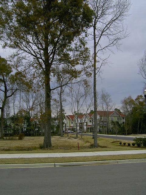 Live Oaks Apartments Murray Ky