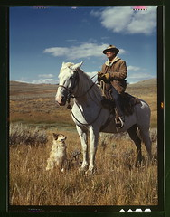 Shepherd with his horse and dog on Gravelly Range, Madison County, Montana  (LOC)
