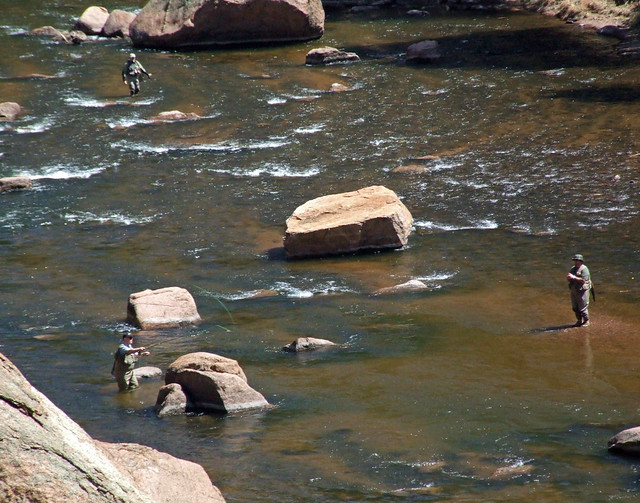 River deckers cheesman canyon b south platte river 11 mile for Deckers co fishing report