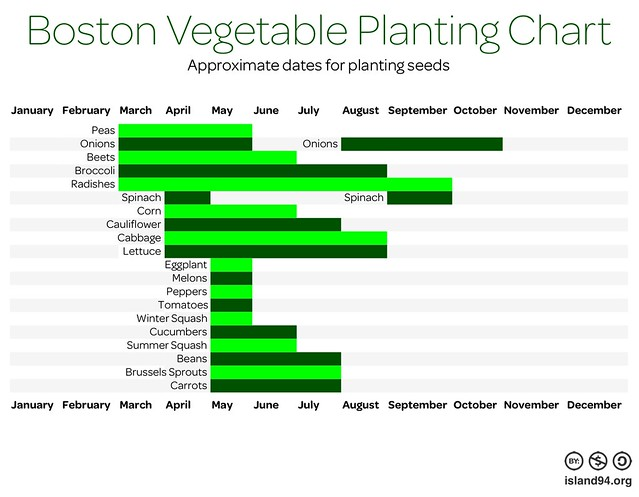 Boston Vegetable Planting Chart | A chart of approximate dat ...