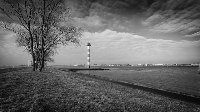 Landtong Rotterdam #8443