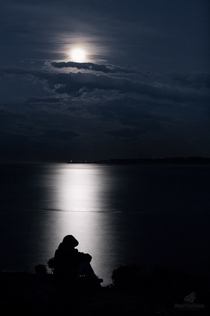 Loneliness Under The Moonlight