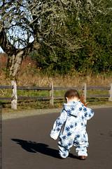 chasing his shadow    MG 6578