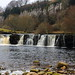 Small photo of Wain Wath Force