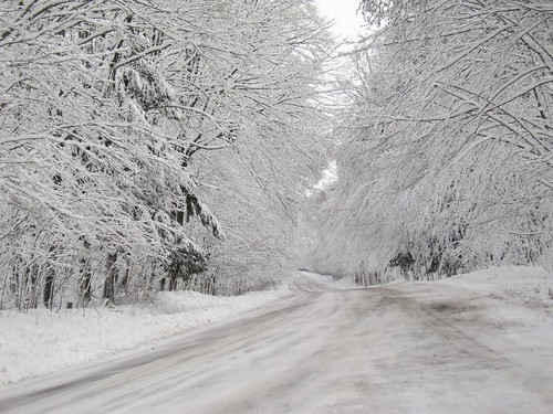 Snow Bound: Winter 2013 forecast to be cold & snowy for Michigan