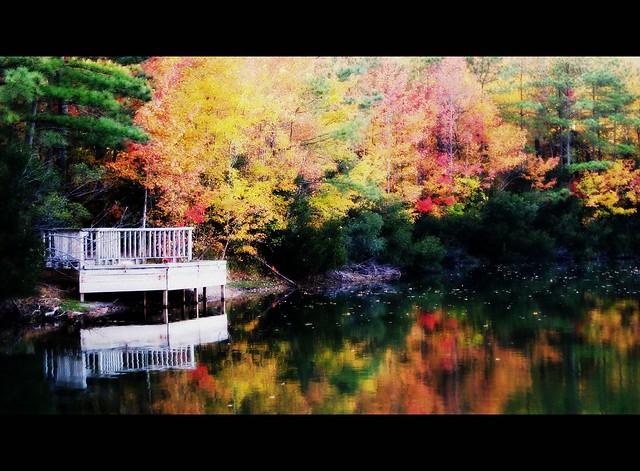 Sandy Bottom Nature Park