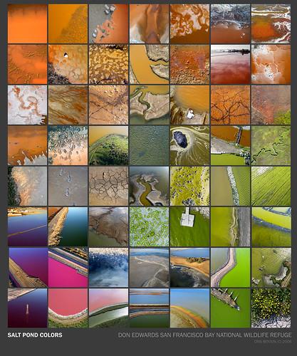 Hidden ecologies blog archive salt pond colors for Design of evaporation pond