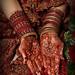 Mehnaz Bridal Palms full color