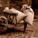 Old time wheel-barrow by zamon69